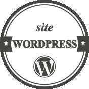 picto_graphiste_nancy_wordpress_petit